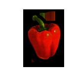 pebrot-vermell