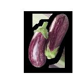 alberginia-bigarrada