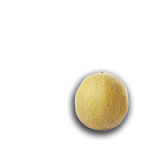 melo-groc
