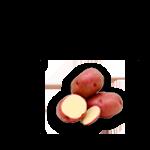 patata-vermella